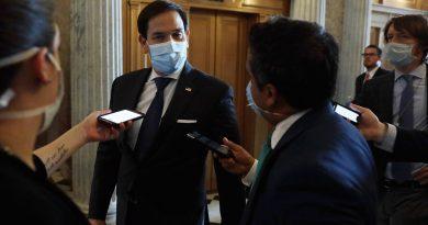 Senate Proposes PPP Improvements